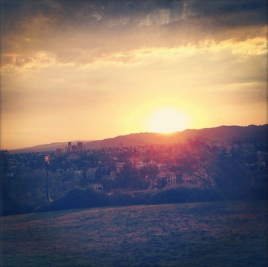 A lovely view of the city from Barnsdall Art Park. (Photo courtesy of Yelp)
